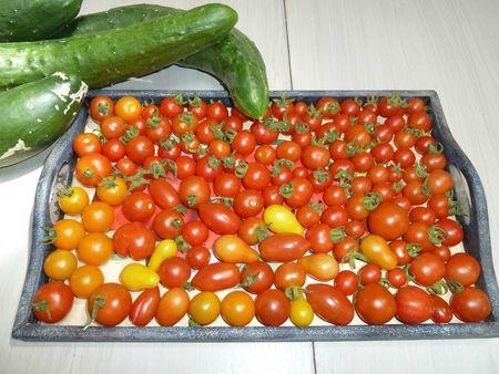 14-récolte du 1 aout 2012 (2)