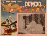 dumbo_mexique_photo_01