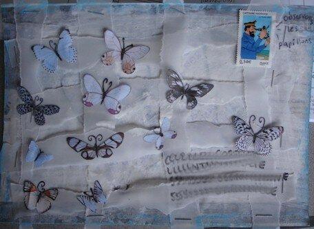 Papillons pour Carole64