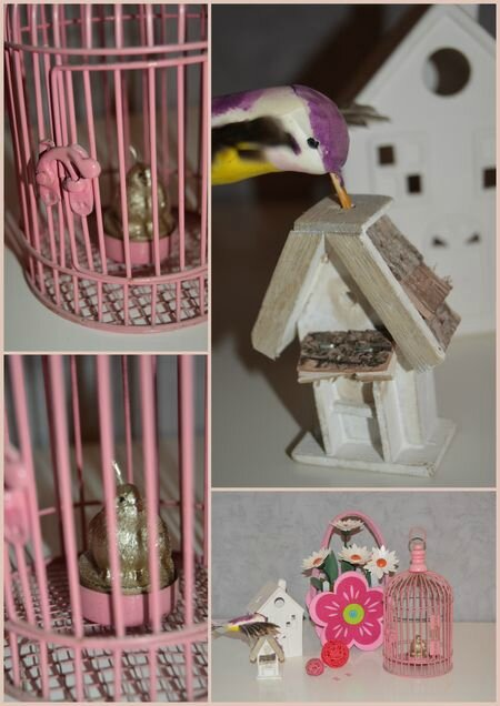OiseauxROSE