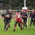 23IMG_0274T