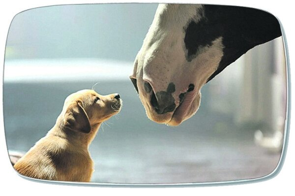 Superbowl Ad Puppy Love