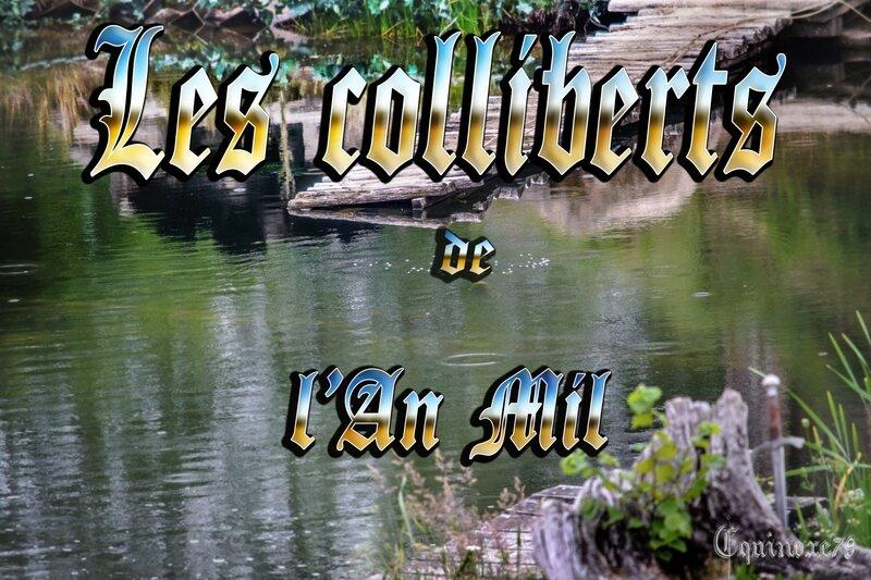 les colliberts de l'an mil (2)