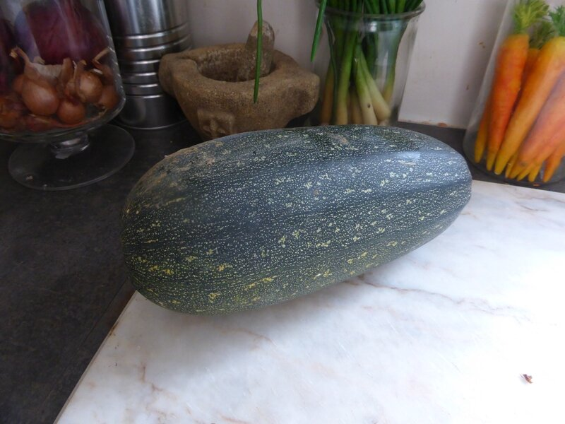 21-vieille courgette (8)