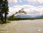 16_Jun_04___Floating_sur_la_Snake_river_a