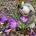 Le printemps vient tout fraîchement d'arriver !