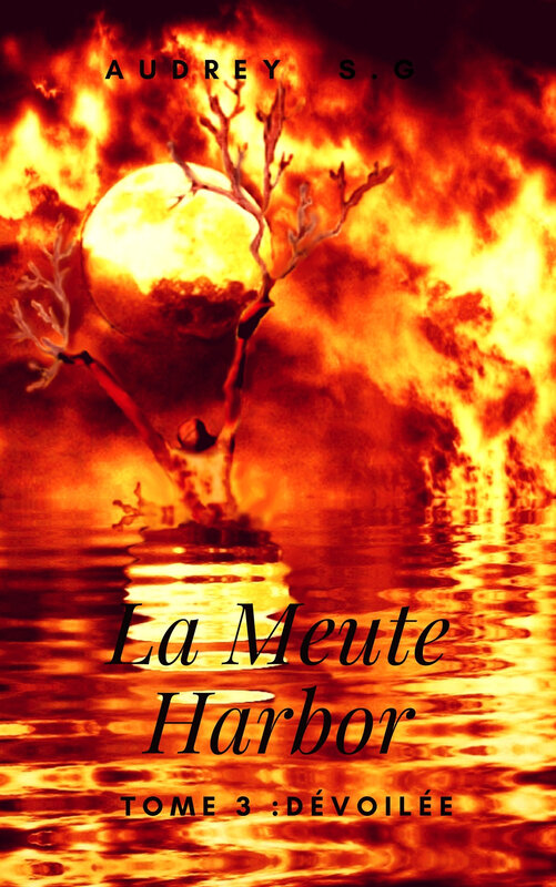 Couverture LMH Tome 3