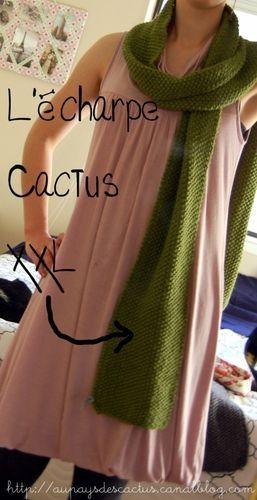 Echarpe XXL Au pays des Cactus