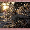 Le moment captif d'un dimanche : hivernal