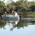 La pêche au barramundi