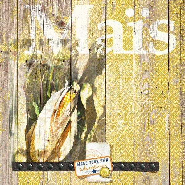 15-09 maïs