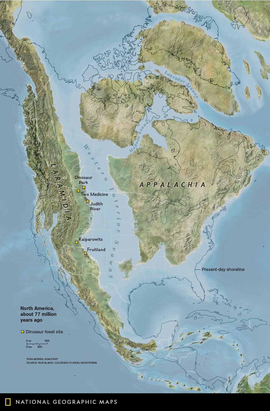 North America about 77 million years ago
