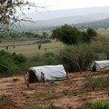 Forced repatriation from tanzania