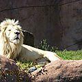 zoo AG (68).JPG