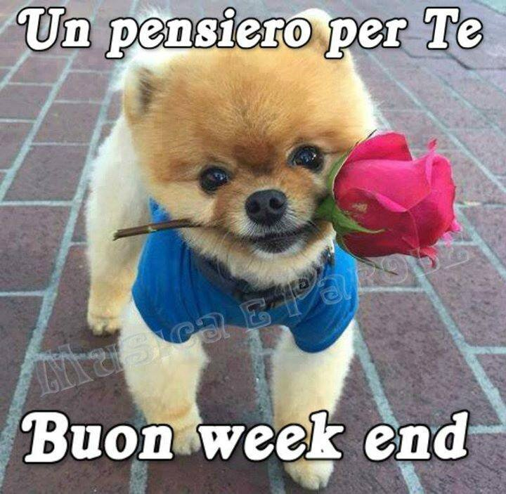 buon-week-end_007