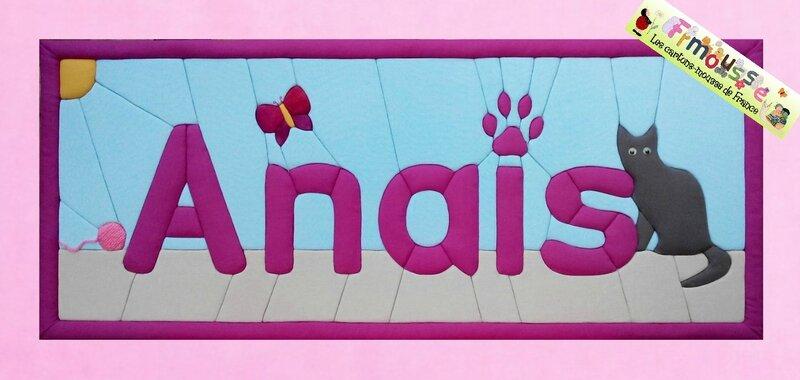 ANAIS Bannière