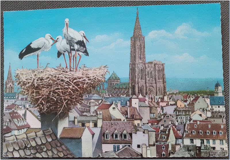 Strasbourg 2 - Tour de la cathédrale