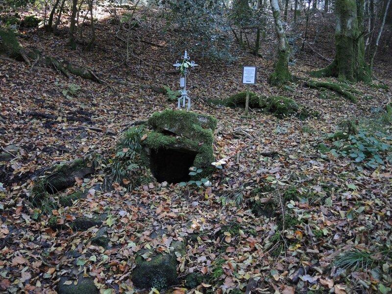 Chapelle de Faubouloin, fontaine du frêne (58)