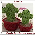 Cactus crochet tuto