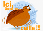 Ici, on se les caille !