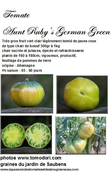 tomate aunt ruby's german green