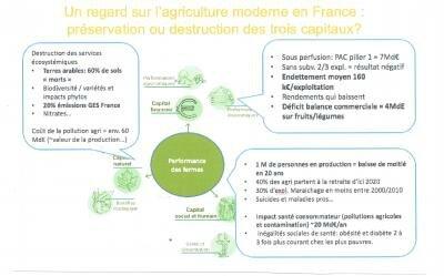 Agriculture XYZ