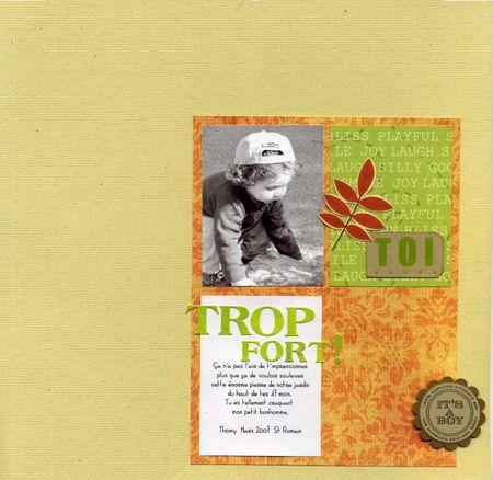 TROP_FORT