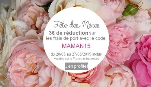 reduction-fete-des-meres-graine-d-envie-1