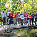 1009-Forêt du Pont de l'Arc