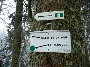 03_chemin Saint_Jacques