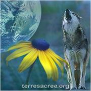 TerreSacree