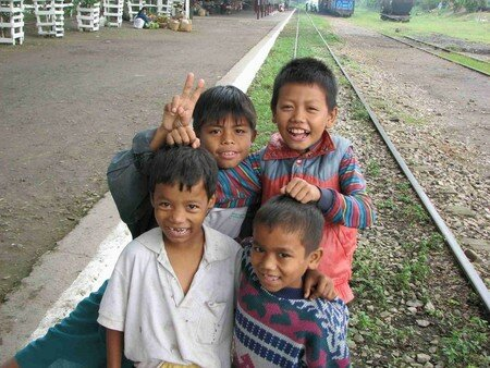 Birmanes__Birmans__46_