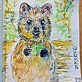 Défi dessin 210 - un animal d'australie