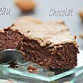 Gâteau au chocolat...belle-vue.