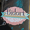 Mini album bidart...
