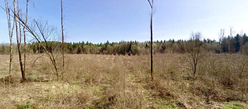 bois d'Avocourt, mars 2011 (3)