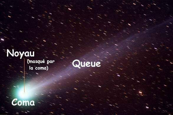 cometes_structure