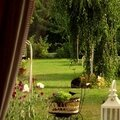 Windows-Live-Writer/jardin_D005/DSCF3915