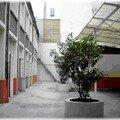 A - L'Ecole Petrelle en 2007