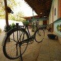 Vélo dans une maison de l'oasis de Dun Huang