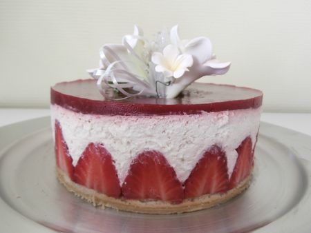 fraisier 1 002