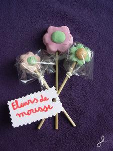 Fleurs_de_mousse