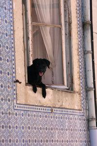 Lisbonne_33