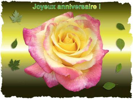 anniversaire_fleurs_joliecarte4