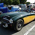 Austin healey 3000 1959-1967