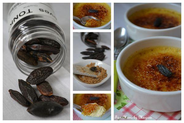 Crème brûlée fève tonka