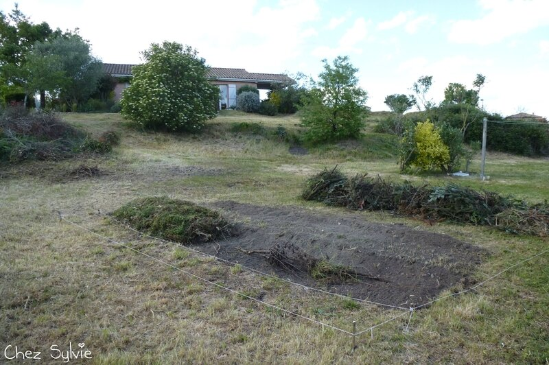 Potager permaculture 11