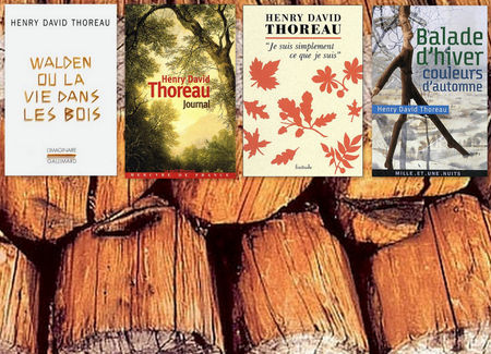 Thoreau_books