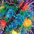 Fleurs en plumes