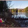 Détour par le parc national + différence lac et étang + cerisiers sauvages - national park + lake vs pond + wild cherry trees